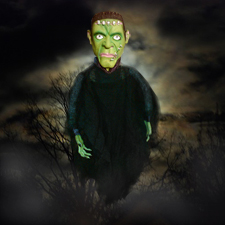 18&quot; Posable Hanging Creepy Character - Frankenstein